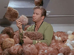 Taken from Wikeiedia explaining the STar Trek episode The Trouble With Tribbles