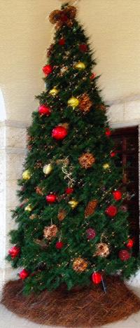 Christmas Tree photoshopped