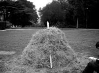 Needle_BIG_haystack
