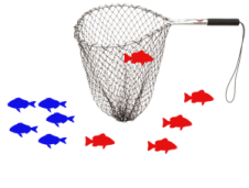 20% Red Fish Recall