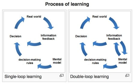 double-loop-learning